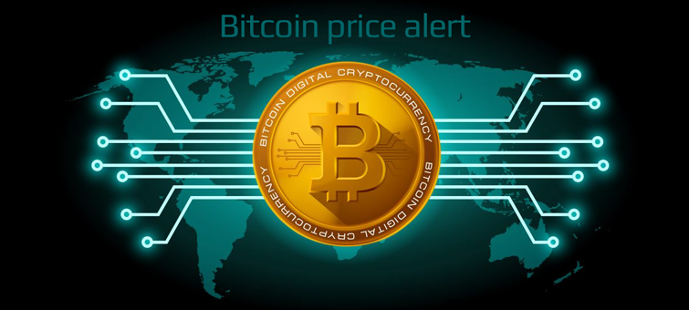 Bitcoin price bot alert cover photo bot